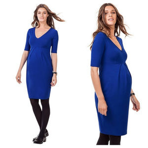 Isabella Oliver Roslyn maternity dress